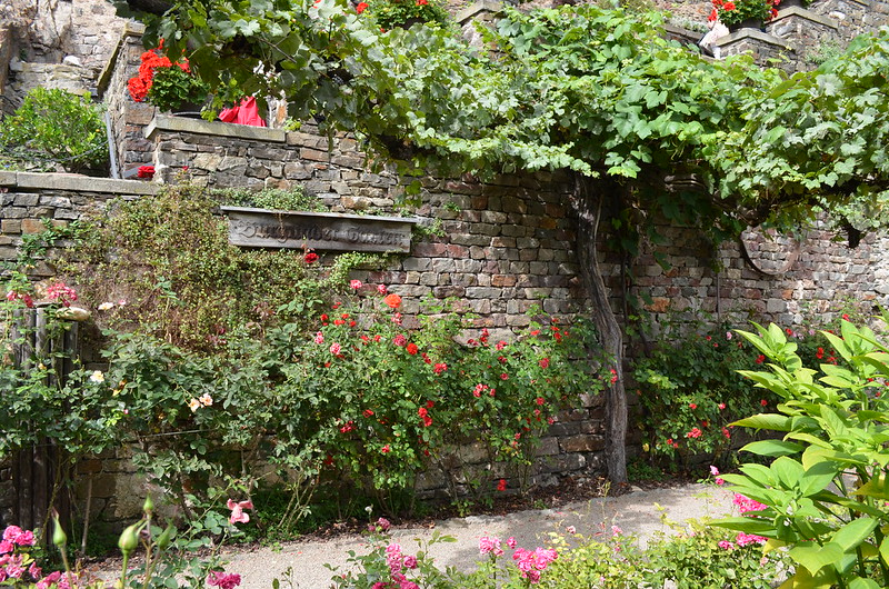 Rheingau Romantik Tour_Burg Rheinstein gardens