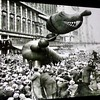 Grateful for each and every one of you. #Thanksgiving. Macy's parade, 1927 #gratitude @skywire7
