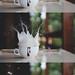 splashhh by Ana ↣