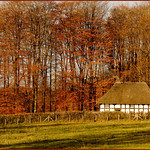 ABERNODWYDD  FARMHOUSE Built 1678  Re- erected 1951