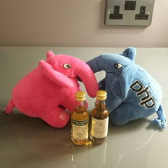 350: Elephpants partying with whisky