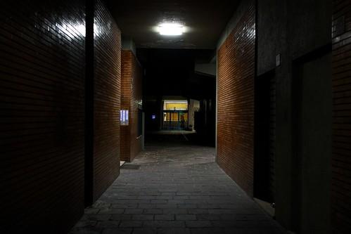 """299/365 - """"Night Walking"""" nr.26 by Luca Rossini"""