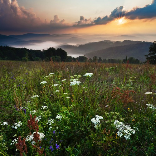 wood flowers trees summer sun mountains nature colors grass sunshine weather fog sunrise season square landscape outdoors landscapes day place wind outdoor meadow sunny czechrepublic beskydy canon5dmarkii moraviansilesianregion instagram velkýsošov