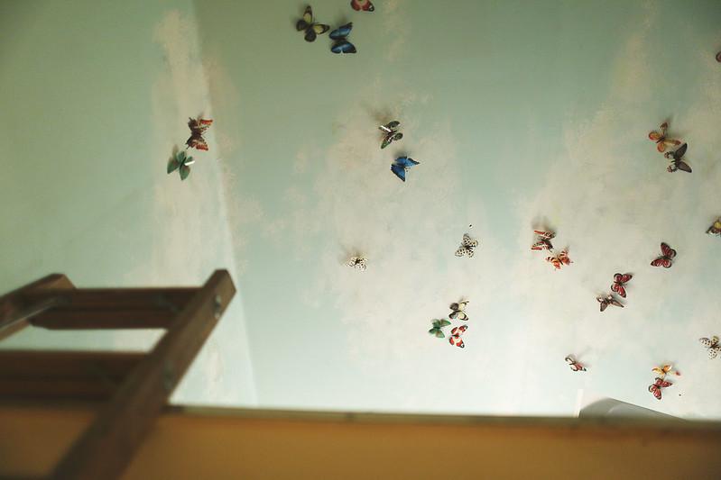 Q76A9614-butterflies