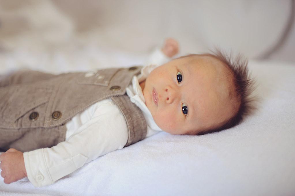 Indiana newborn photographer