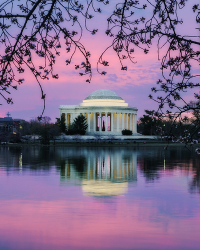 cherryblossoms washingtondc dc washington sunrise jeffersonmemorial tidalbasin water reflection pink nikon insiteimage d750
