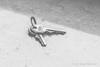 Surreal Keys
