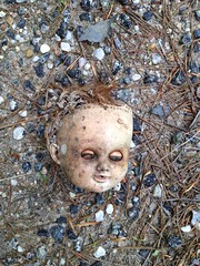 Roadside Find - Doll Head
