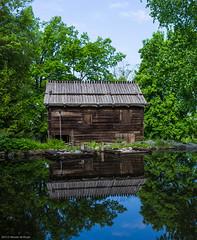 Reflections - Skansen