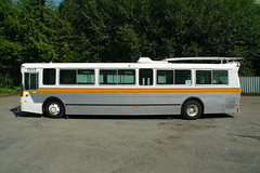 automobile, trolleybus, vehicle, transport, mode of transport, public transport, land vehicle, bus,