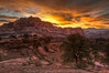 Capitol Reef National Park by Utah Images - Douglas Pulsipher