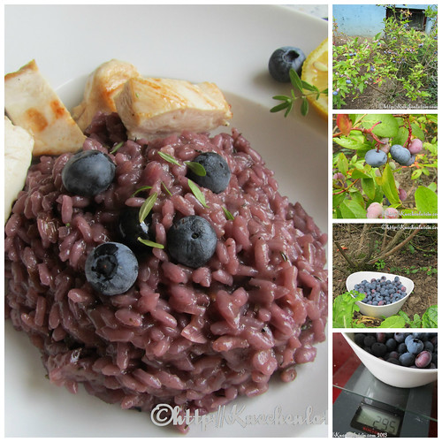 ©Pikantes Blaubeer-Risotto Collage