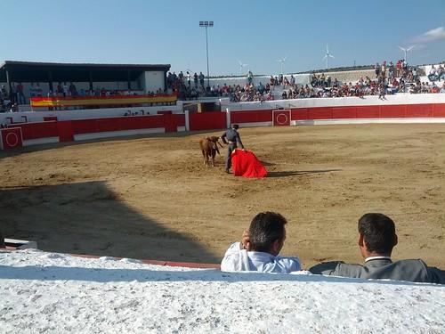 toros en maranchon