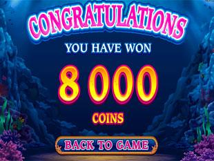 Dolphin Quest Bonus Prize