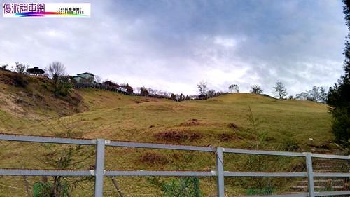 優派租車觀光旅遊-清境農場-青青草原