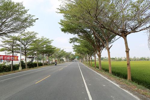 沿途路上2_樂米工坊