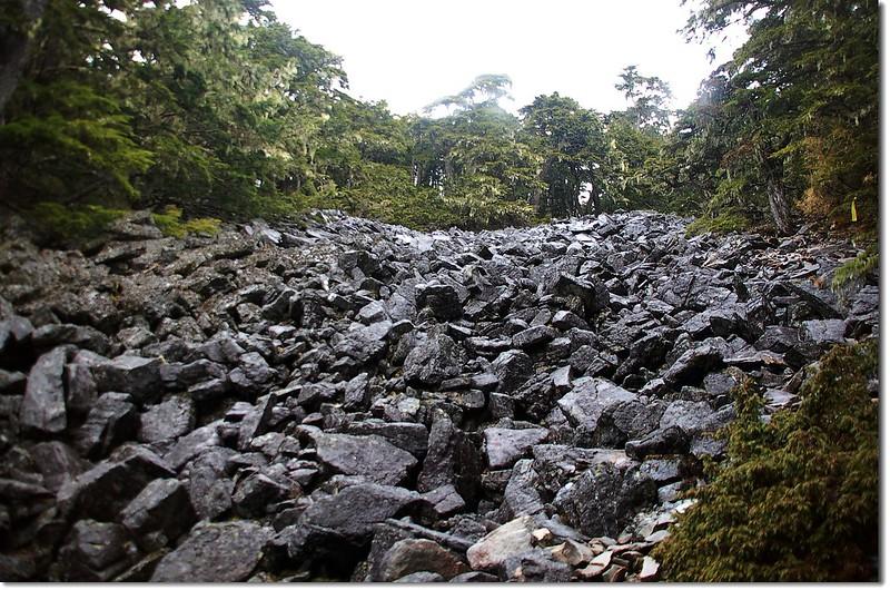 池有山登山口碎石坡