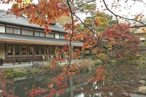 【写真】2013 紅葉 : 白沙村荘/2020-12-28/IMGP3694
