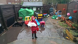Making the most of the garden flood