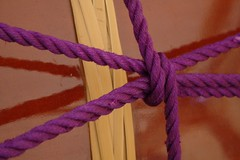purple, violet, knot,