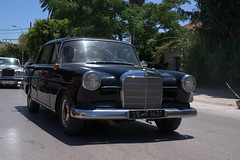 automobile(1.0), automotive exterior(1.0), vehicle(1.0), mercedes-benz(1.0), mid-size car(1.0), compact car(1.0), mercedes-benz w111(1.0), antique car(1.0), sedan(1.0), classic car(1.0), vintage car(1.0), land vehicle(1.0), luxury vehicle(1.0), motor vehicle(1.0),