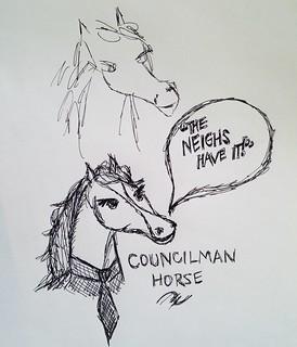 Horse Council!