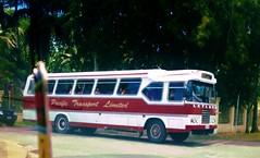 CM 290