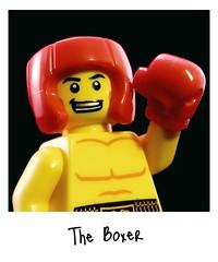 Boxer Snapshot