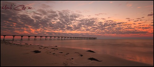 ocean morning sea sun seaweed beach clouds sunrise canon bay pier dock sand glow jetty south australia wharf adelaide sa semaphore largs efs1022mm 550d eos550d markcooperphotography