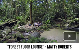 'Forest Floor Lounge' - Matty Roberts