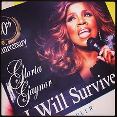I will survive (y como se conserva la moza, que lustre me lleva la jodia) #ny #bea13