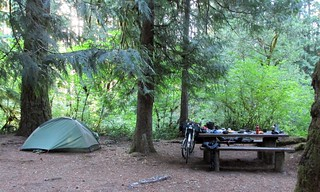 My campsite at Limberlost.