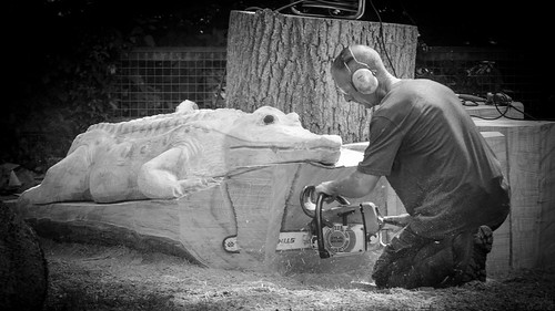 Chainsaw carving shadthecat