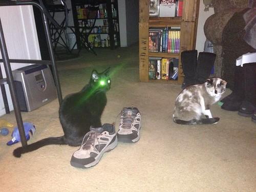 Myst prepares to laser-blast Tinny