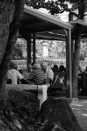En el Jardím da Estrela se juega a las cartas para matar el tiempo