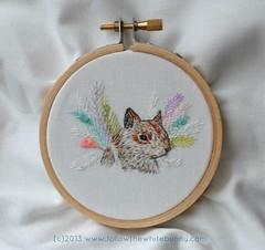 bird the squirrel