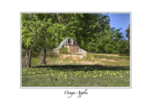 autumn green nature field horizontal fruit barn rural landscape missouri americana crops hdr week42 combo day292 2013