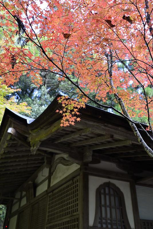 2013.11.13京都 高山寺