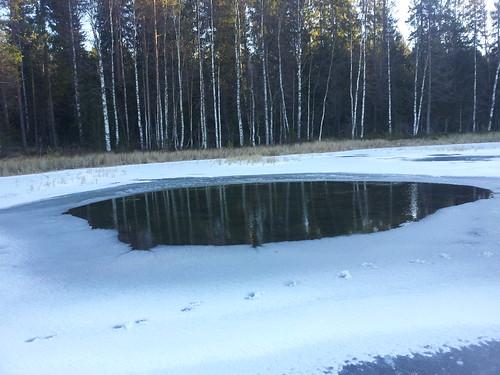 cbiong posted a photo:Fra skøytetur 1.12.2013. Fin is på Vesle Skillingen 1.12.2013.
