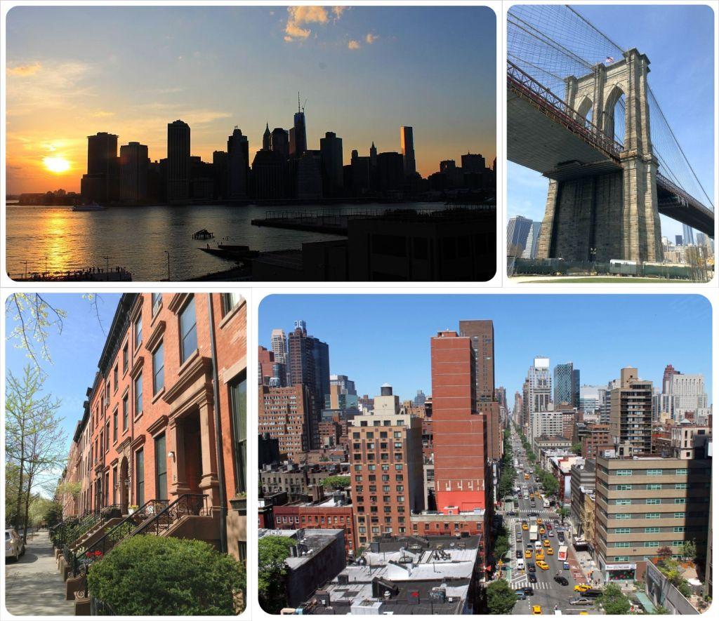 Housesit New York City