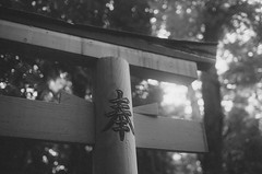 Another Shrine in Kyoto, Japan / 52 Rolls - Weeks 42-44 - #2