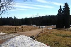 47. ročník ČEZ Jizerské 50 je kvůli nedostatku sněhu odvolán
