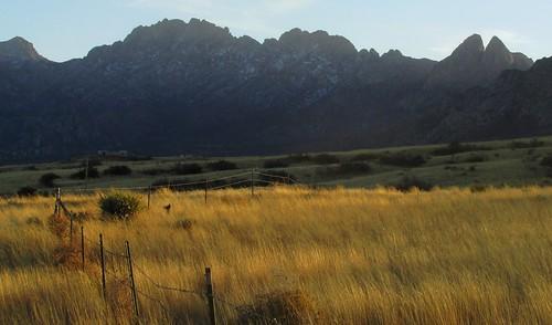 southwestlandscape