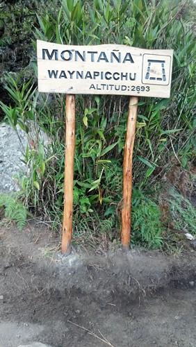 와이나픽추 표지