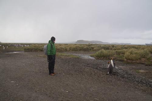 620 Arjan met pinguins