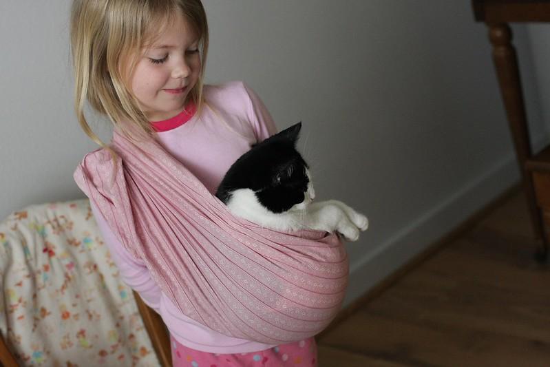 sling cat
