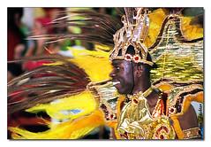 Coleção: Figurino Carnaval - Alegoria - Carros
