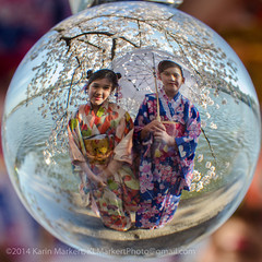 Crystal Ball Cherry Blossoms3-37