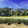 Capyvaras #capybara #capyvara #aguasdelindoia #saopaulo