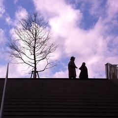 064/365 #365DaysChallenge Du ciel bleu sur La Canopée